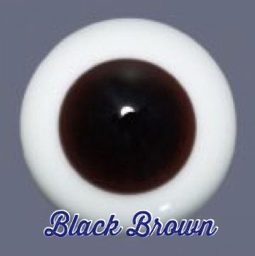Black Brown - LARGE IRIS